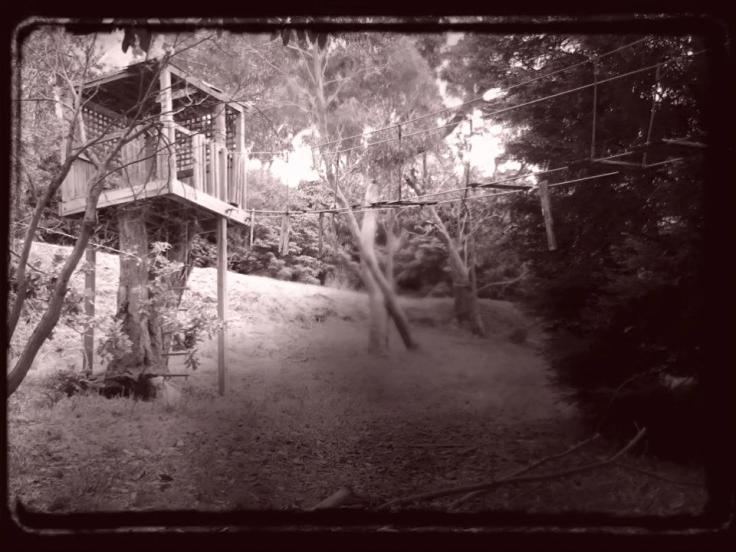 abandoned treehouse